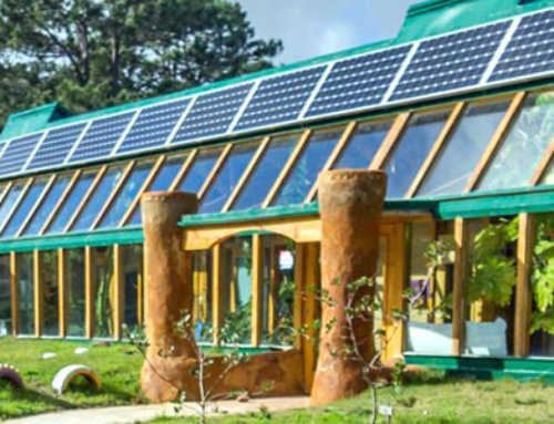 Sustainable Living: Stupidly Simple Tips for Going Gloriously Green