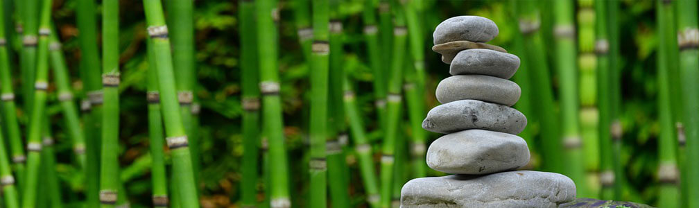 bamboo and zen stone garden