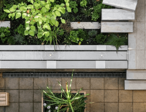 Create a Stunning Low Maintenance Yard You Never Want to Leave